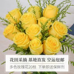 云南昆明玫瑰花鲜花基地直发20枝一扎家用办公室花束空运包邮