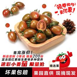 迷彩小番茄新鲜迷彩千禧圣女果现摘现发4斤包邮时令果蔬