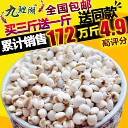 买3送1包邮 新鲜贵州小薏米 薏米仁薏仁米苡仁五谷杂粮粗粮油500g