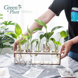 创意玻璃水培花瓶绿萝植物小清新个性摆件客厅插花餐桌容器装饰品