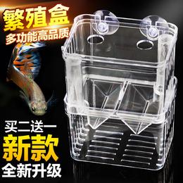 孔雀鱼繁殖盒鱼苗孵化器缸外小鱼隔离网产房斗鱼缸亚克力母特大号
