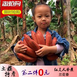 红皮香蕉2.5斤 美人蕉 土楼特产 新鲜水果非芭蕉小米蕉banana包邮