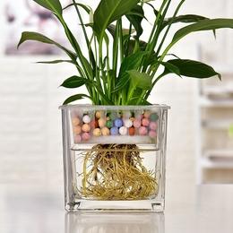 大号玻璃花盆水培容器透明创意个性绿萝植物多功能水养铜钱草花瓶