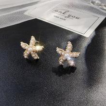 珍珠海星耳钉女气质网红韩国东大门个性小清新个性简约学生耳环潮