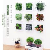 饰品创意家居客厅餐厅卧室墙面壁饰壁挂件 立体仿真多肉植物墙上装
