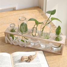 透明玻璃小花瓶花盆 水培绿萝植物容器客厅壁挂木座办公桌摆件