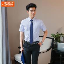 职业装男夏天新款短袖条纹衬衫工装职员上班正装套装房产销售制服