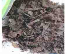 发酵腐叶土腐殖土东北橡树叶松针土兰花月季君子兰土专用土营养土