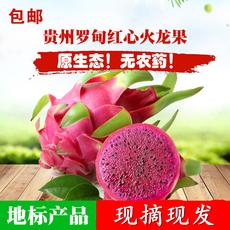 贵州罗甸红心火龙果6斤 孕妇宝宝  当季新鲜水果包甜现摘现发包邮