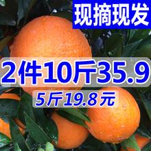现摘现发四川新鲜橙子脐橙香甜橙水果非赣南橘子砂糖桔2件约10斤