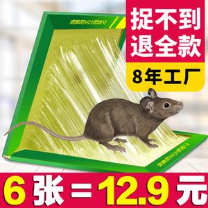 老鼠贴超强力粘鼠板家用捕鼠笼驱鼠灭鼠器夹药神器抓大老鼠笼胶贴