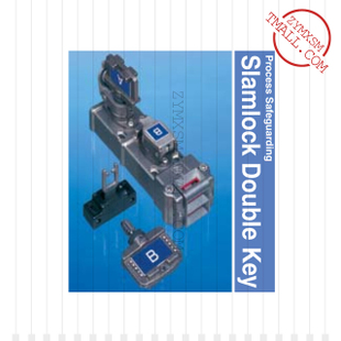 DSLE11(PD)PE〖DBL KEY EXCHANGE FLEX ACTUATOR〗