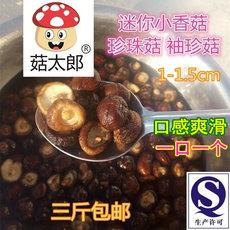 菇太郎小香菇干货 农家特级小香菇珍珠迷你菇 干香菇500g