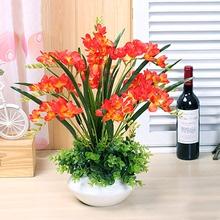 香雪兰盆栽重瓣 阳台桌面窗台观花盆栽绿植 秋冬盆栽热卖花卉