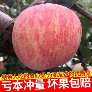 新鲜烟台苹果水果山东栖霞红富士整箱当季孕妇吃的脆甜5斤包邮80#红富士新鲜水果