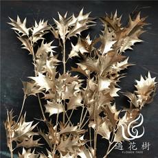 遇花树精品推荐日本进口大地农园永生花材永生花盒配材金色刺桂叶