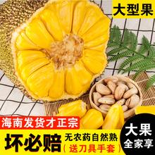 新鲜水果菠萝蜜波萝蜜水果三亚菠萝蜜非红肉30 海南菠萝蜜23 28斤
