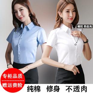 纯棉白衬衫女短袖工作服韩版修身职业装衬衣女正装夏季工装女寸衣