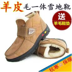 羊皮毛一体雪地靴男鞋保暖加绒纯羊毛真皮短靴户外防滑中老年棉鞋