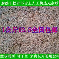 干松针半腐熟松针土喜酸植物花卉君子兰蓝莓杜鹃营养土酸性腐殖土