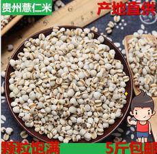 【5斤包邮】新鲜贵州薏仁米 薏米仁 薏米大薏仁米非小薏仁米2500g