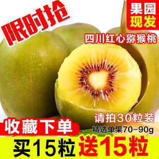 四川蒲江红心猕猴桃新鲜水果批发 当季奇异果弥猴桃应季泥猴桃 包邮