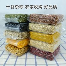 五谷杂粮组合农家粗粮原料营养八宝腊粥250g 十谷米养生粥 10包