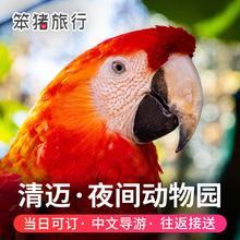 泰国清迈夜间动物园景点门票双龙寺丛林飞跃含接送自由行旅行旅游