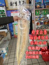 海鲜干0q野生大海鳗qy干带鱼干风干大鳗鱼鲞海鱼干称重