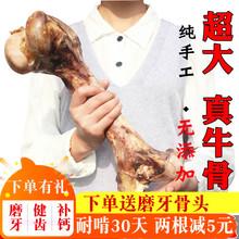 狗骨头0z牙大棒骨金pp大中型犬宠物耐啃磨牙超大牛骨头