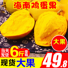 鸡蛋果新鲜海南蛋黄果5斤