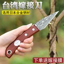 园艺果35嫁接专用刀du进口专业嫁接工具苗木接树削木刀芽接刀
