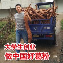 (小)(小)家ac野生天然江ng新鲜老柴葛粉代餐500g送葛片葛花