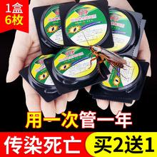 蟑螂药ae窝端大(小)通ob蟑神灭除捕捉器饵剂贴家用厨房枚/盒