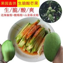 海南三ag生吃芒(小)象ci新鲜酸脆青云南广西辣椒腌制5斤