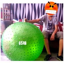 儿童感统训练大龙球按摩球