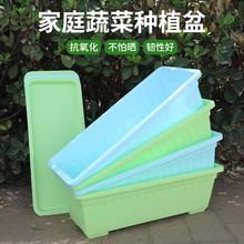 室内家用特al懒的种菜盆ar台长方形塑料家庭长条蔬菜
