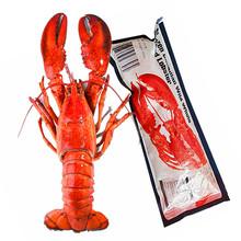 加拿大an士顿龙虾鲜ie熟食波龙特大海鲜400g*2只顺丰包邮