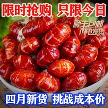 香辣(小)an虾大号特级ma大尾熟冻虾球冷冻无冰衣整箱麻辣味5斤