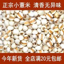 全店满aq0元包邮一vs意仁米(小)苡米五谷杂粮干货500g