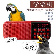包邮八哥鹩哥鹦鹉鸟用at7语机学说sn机学舌器教讲话学习粤语