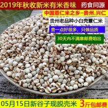 新鲜1at现脱壳白糯ic贵州兴仁药(小)粒薏苡仁五谷杂粮