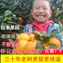 正宗麻aw冰糖橙新鲜rc果甜橙子非赣南10斤整箱手剥橙