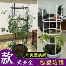 花架爬ax架铁线莲月lc植物支架牵引架子户外庭院室内花支架杆