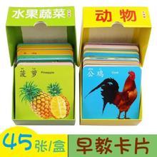宝宝动ba卡片图片识kw水果幼儿幼儿园套装读书认颜色新生大两