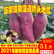 海南澄ba沙地桥头富ig新鲜农家桥沙板栗薯番薯10斤包邮
