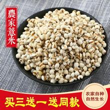 202be东北(小)农家ut50g薏苡仁米五谷杂粮煮薏仁米红豆粥原料