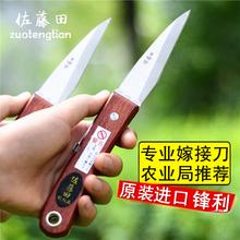 进口苗bi芽接刀手工mi工具果枝接木刀果削木接树刀