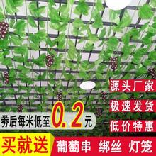 假花绿bi葡萄叶假树rd藤蔓室内植物吊顶装饰树藤绿植