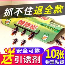 蟑螂屋bi蟑螂药家用en蟑清捕捉器除杀粘板粉杀虫剂